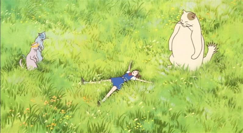 Ghibli The Cat Returns Cats Crystal Eye