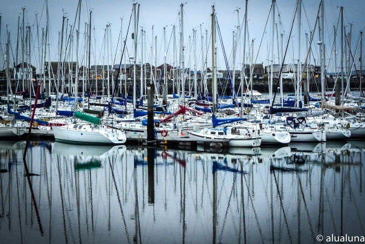 The Yachts of Howth
